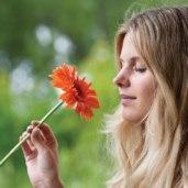 smell-female-flower